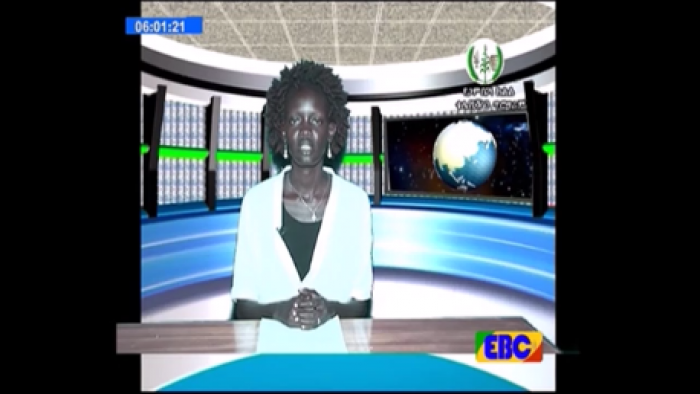 Gambella TV News - February 28, 2017